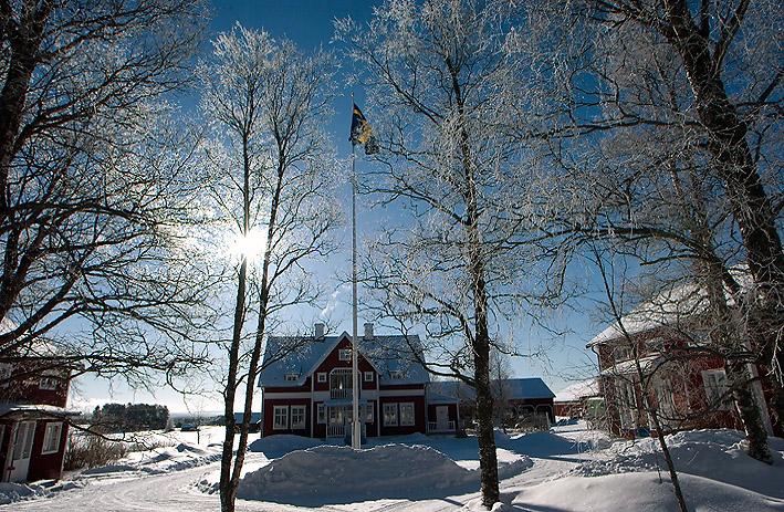 vinter-garden